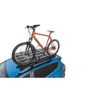 Hybrid Bike Carrier
